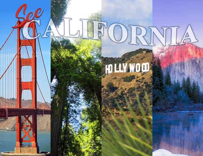 Want to Visit California? Book Now for the Future.